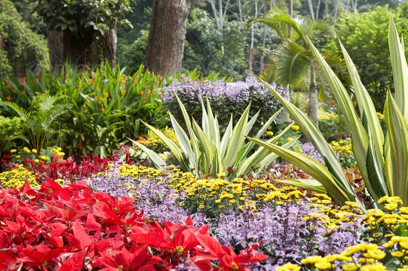 Caretakers Property Maintenance creates stunning floral arrangements as its duties of landscape contractors.