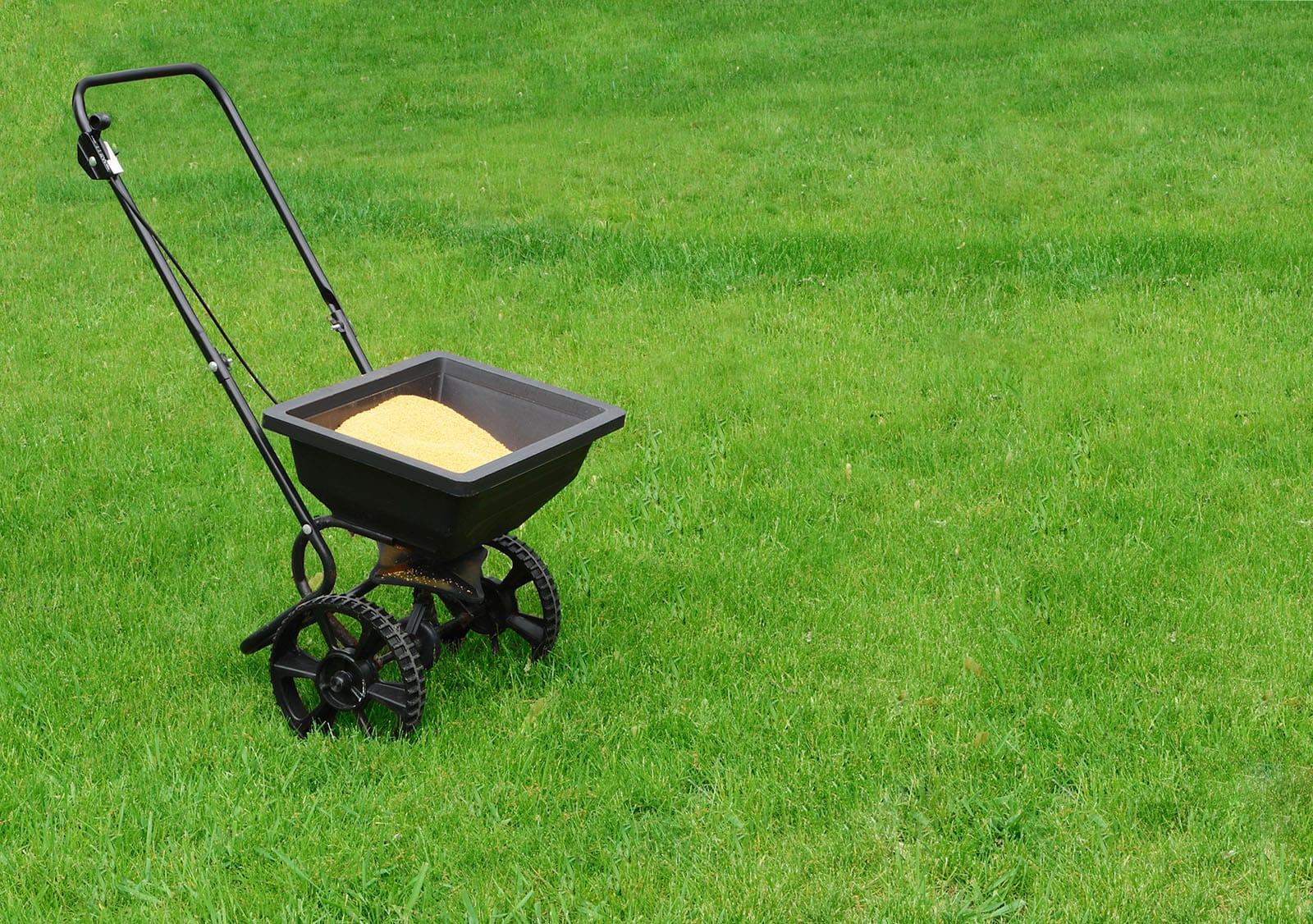 Lawn Fertilizer Services