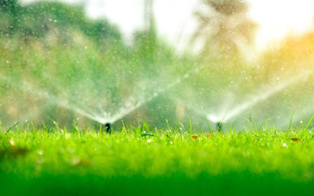 Sprinklers sprinkling a lawn. Part of an irrigation installation